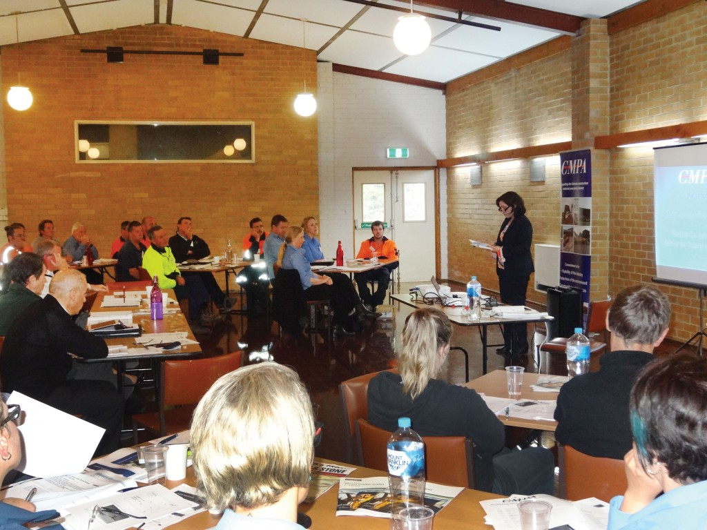 SITE PHOTO: The Hon Lily D'Ambrosio, Minister for Energy and Resources addresses the members.